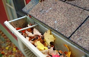 Gutter Cleaning | Elmwood Park, NJ | A-Apache Animal & Pest Services | 201-791-4333