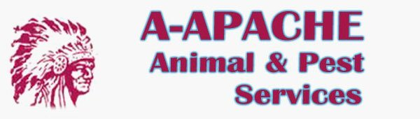 Exterminator | Elmwood Park, NJ | A-Apache Animal & Pest Services | 201-791-4333