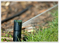 Irrigation Services | Santa Clarita, CA | Abel's Gardening Service | 661-476-5883