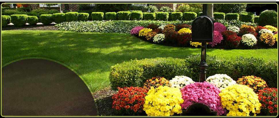 Contact Us | Santa Clarita, CA | Abel's Gardening Service | 661-476-5883