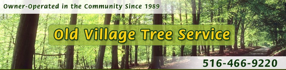 Great Neck, NY - Tree Service - Old Village Tree Service