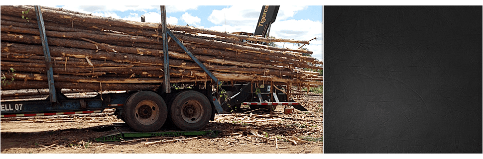 Scale installation | Hazlehurst, GA | Accu-Ways, Inc. | 912-375-9131