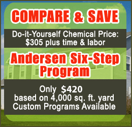 Lawn spraying and weed control lubbock tx andersen landscape landscape design lubbock tx andersen landscape maintenance call us for details solutioingenieria Gallery