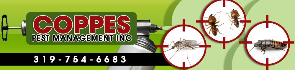 Pest Control - Burlington, IA - Coppes Pest Management Inc