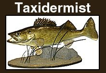 Taxidermy Services - Vicksburg, MS - Backwoods Taxidermy