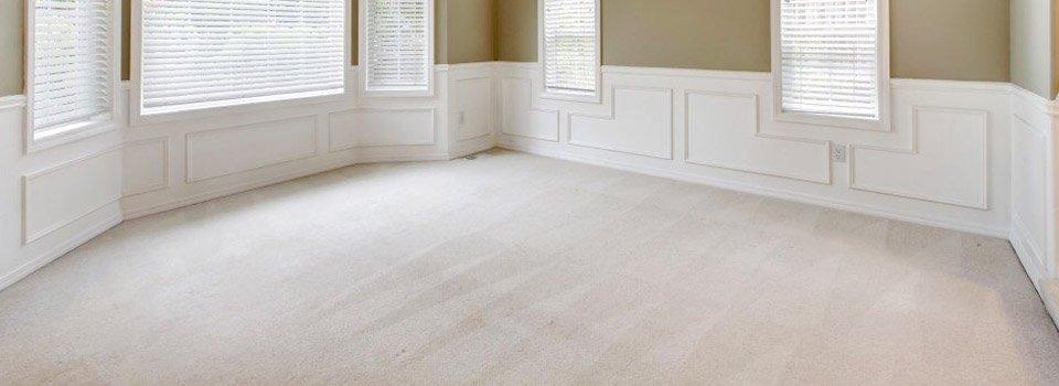 carpeted floor