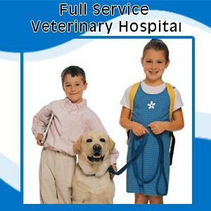 Veterinary - Burke, VA - Parkway Veterinary  - kids with dog - Full Service Veterinary Hospital