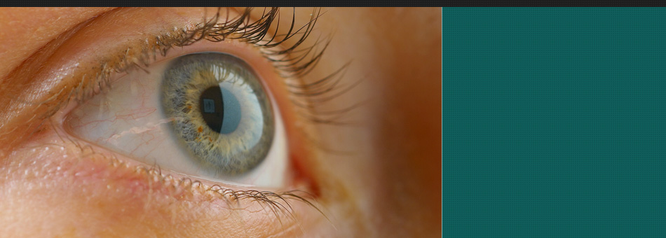 eye exams | Garden City Park, NY | Focal Point Optical | 718-225-7400