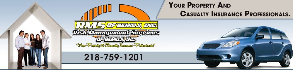 Insurance - Bemidji, MN  - Risk Management Services Of Bemidji Inc
