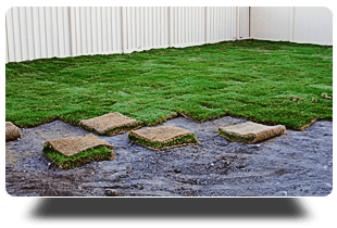 Lawn installation | Plainsboro, NJ | Tri-County Turf LLC | 609-897-9000