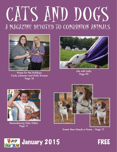 Cats and Dogs Jan 2015 cover