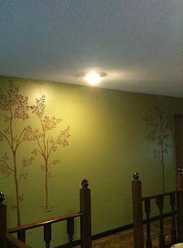 texture finishes   Fort Wayne, IN   Krystal Klear Decorating   260-750-0562