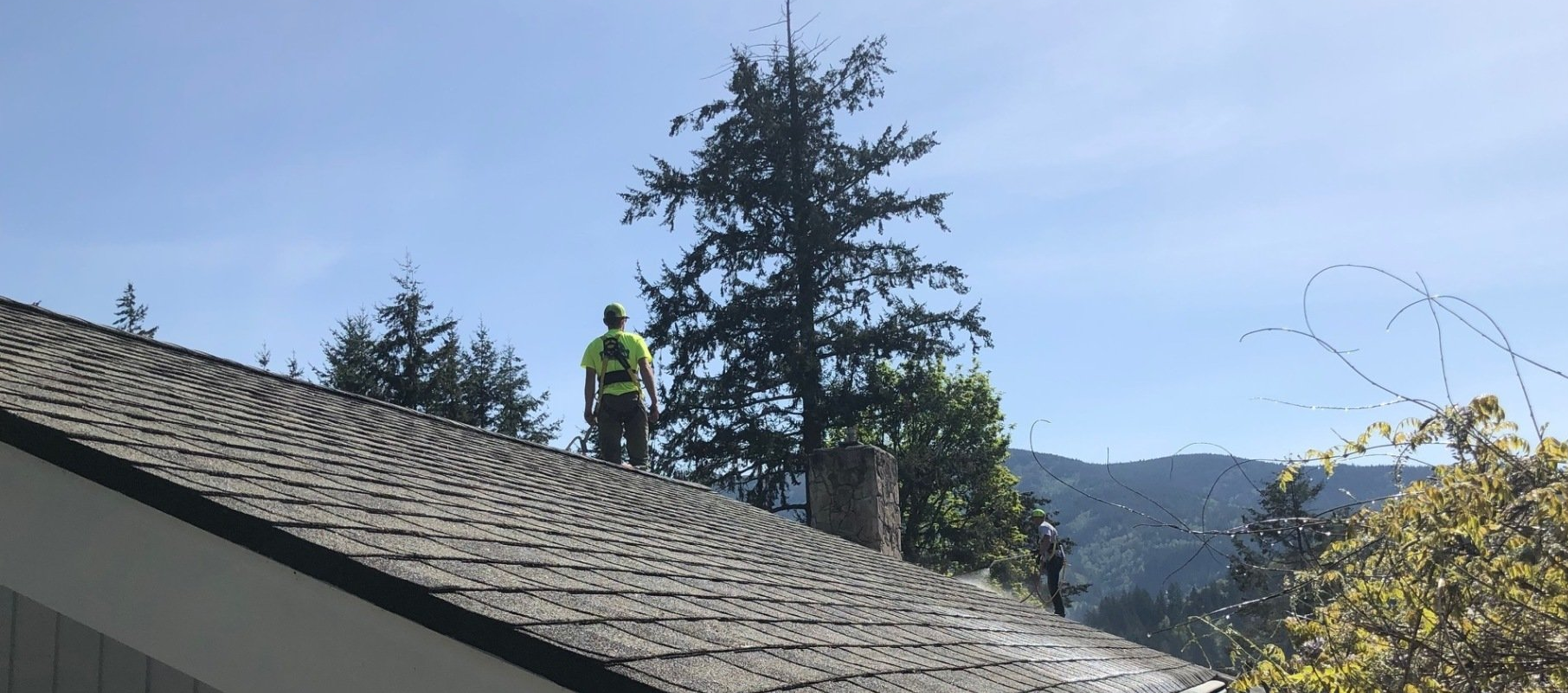 Roof Cleaning Bellingham Wa Gutter Windows Pacific