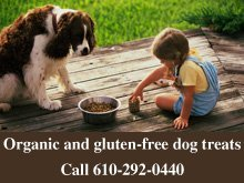 Pet Food - Blue Bell, PA - Tail Waggers