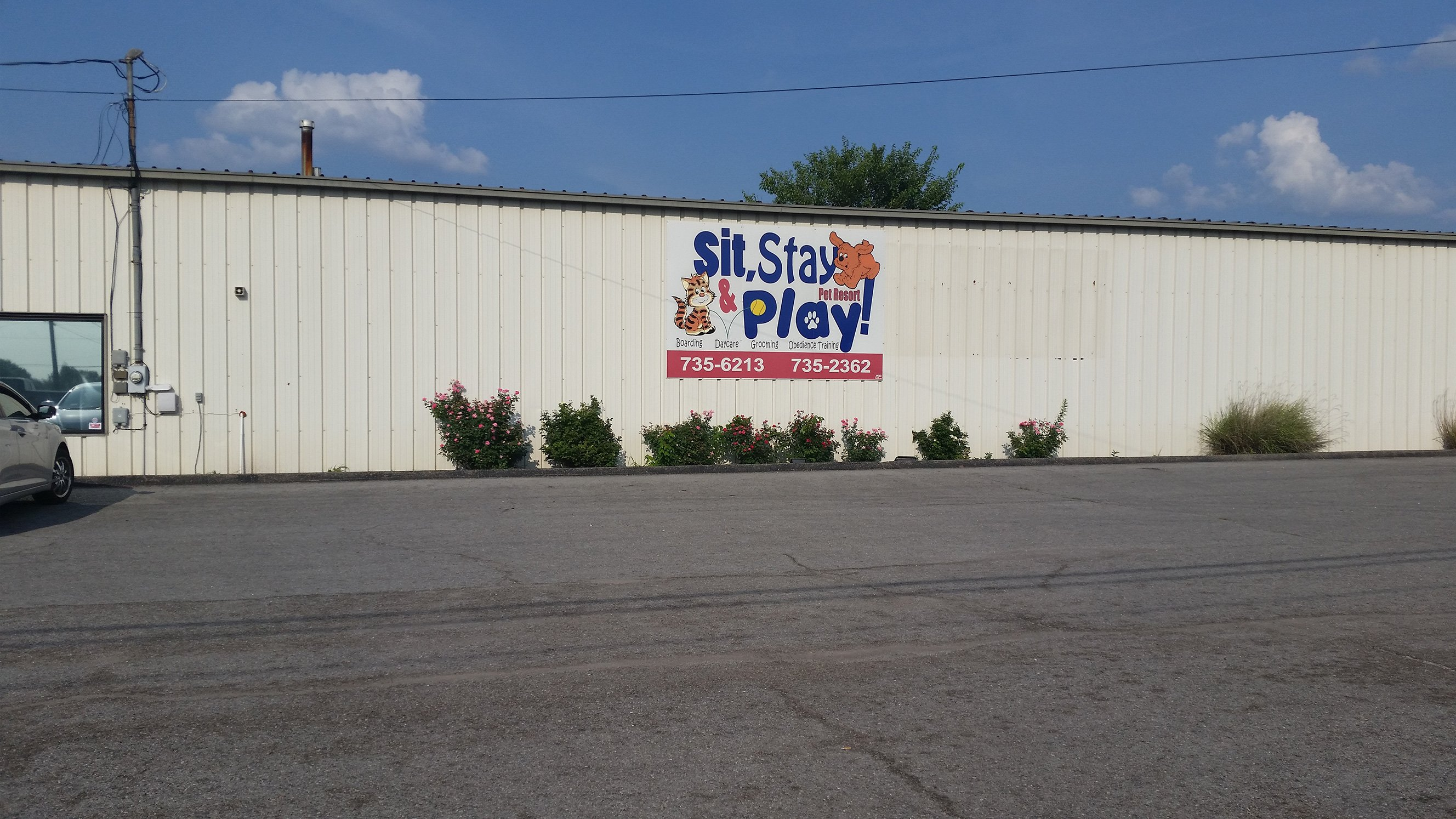 sit stay amp play pet resort photo gallery elizabethtown ky