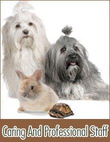 Veterinary Clinic - Kimball, SD - Countryside Vet Clinic