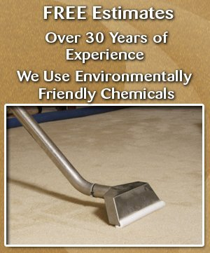 Carpet Cleaning Service - Kutztown, PA - Werley's Cleaning Service
