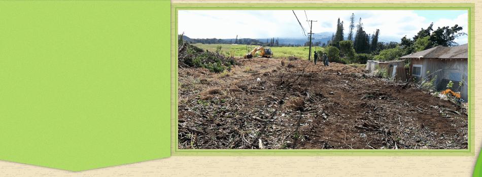Wood Chips for Sale | Maui, HI | DeCoite Tree Service | 808-573-2756