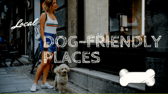 Dog-Friendly Places in our Local Area