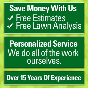 Landscaping - Bear, DE  - New Castle Lawn and Landscaping of Delaware