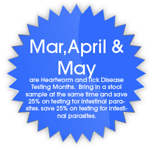 March April & May Senior Pet Health Month  Call for discount details!