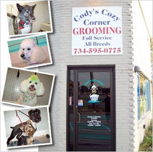 Dog and cat grooming westland mi codys cozy corner dog and cat grooming westland mi codys cozy corner solutioingenieria Gallery