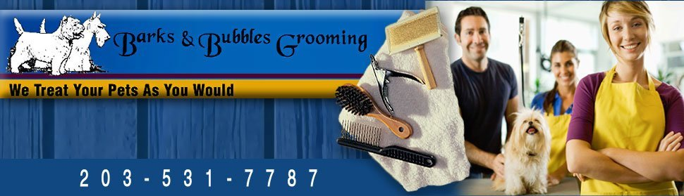 Dog Groomer - Greenwich, CT - Barks & Bubble Grooming