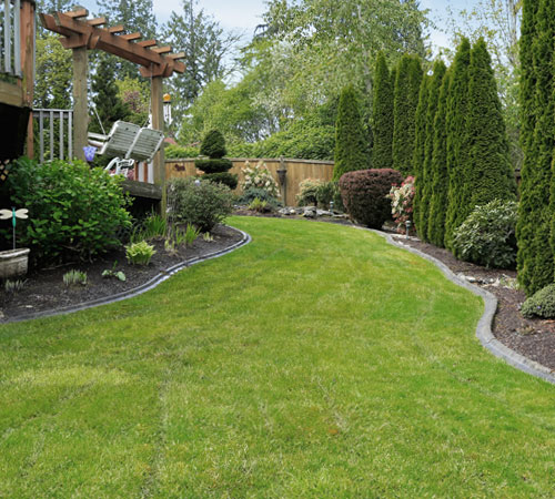 M S Landscape Group Lawn Maintenance Boston Ma