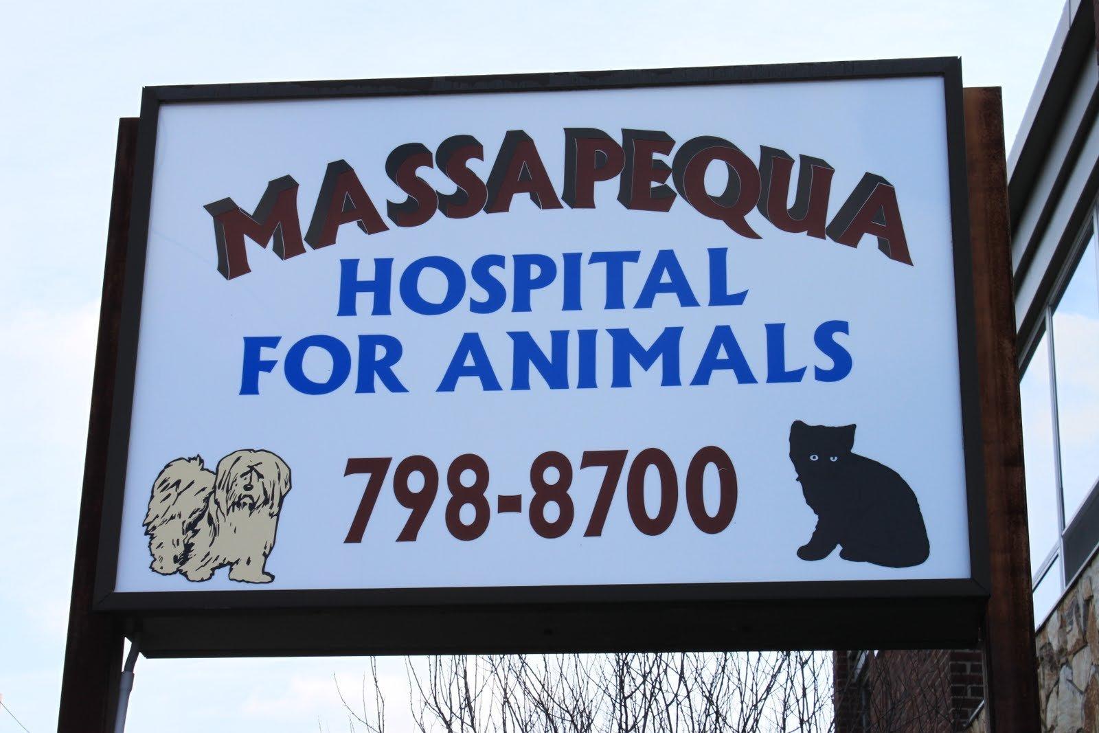Massapequa Hospital For Animals Board
