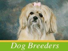 Dog Breeders - Dade City, FL - Nonnie's Puppies