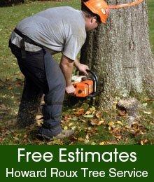 Tree Service - Ottawa, IL  - Howard Roux Tree Service - Tree Removal
