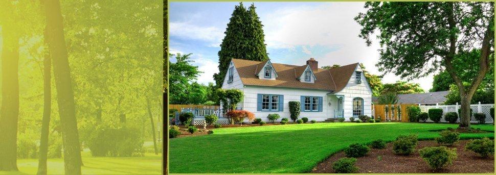 Insurance Work | Spokane, WA | Aardvark Tree Service | 509-891-7650