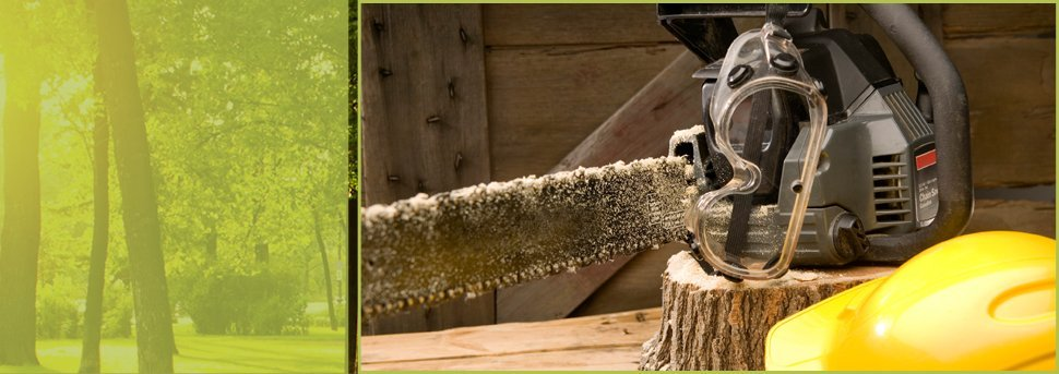 Aardvark Tree Service | Spokane, WA | Aardvark Tree Service | 509-891-7650