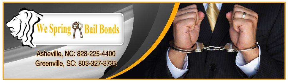LION Surety Services, LLC We Spring Bail Bonds - bail bondsman - Rock Hill, SC