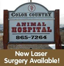Animal Hospitals - Cedar City, UT - Color Country Animal Hospital