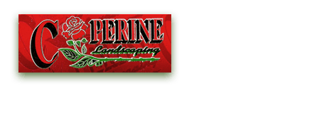 Landscaper | Port Chester, NY | Coperine Landscaping | 914-403-3885