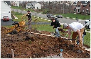 Stump Removal | Brooklet, GA | Floyd Tree Service | 912-842-9770