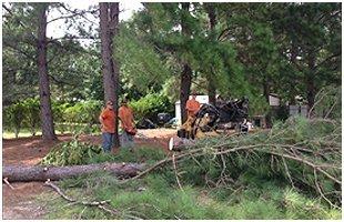 Firewood Sales | Brooklet, GA | Floyd Tree Service | 912-842-9770