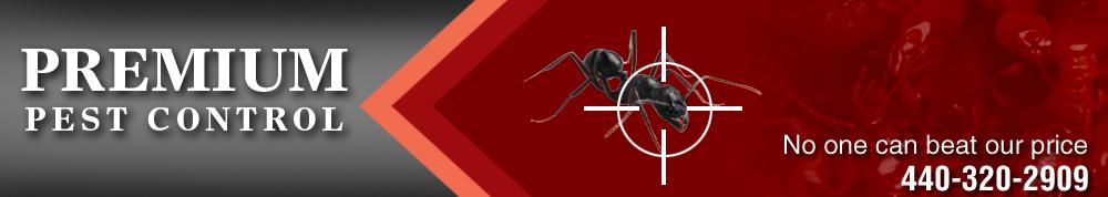 Pest Control - Lorain, OH - Premium Pest Control