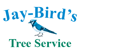 Tree Service | Bonnerdale, AR | Jay-Birds Tree Service | 501-991-3611