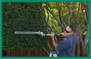 Tree Trimming | Bonnerdale, AR | Jay-Birds Tree Service | 501-991-3611