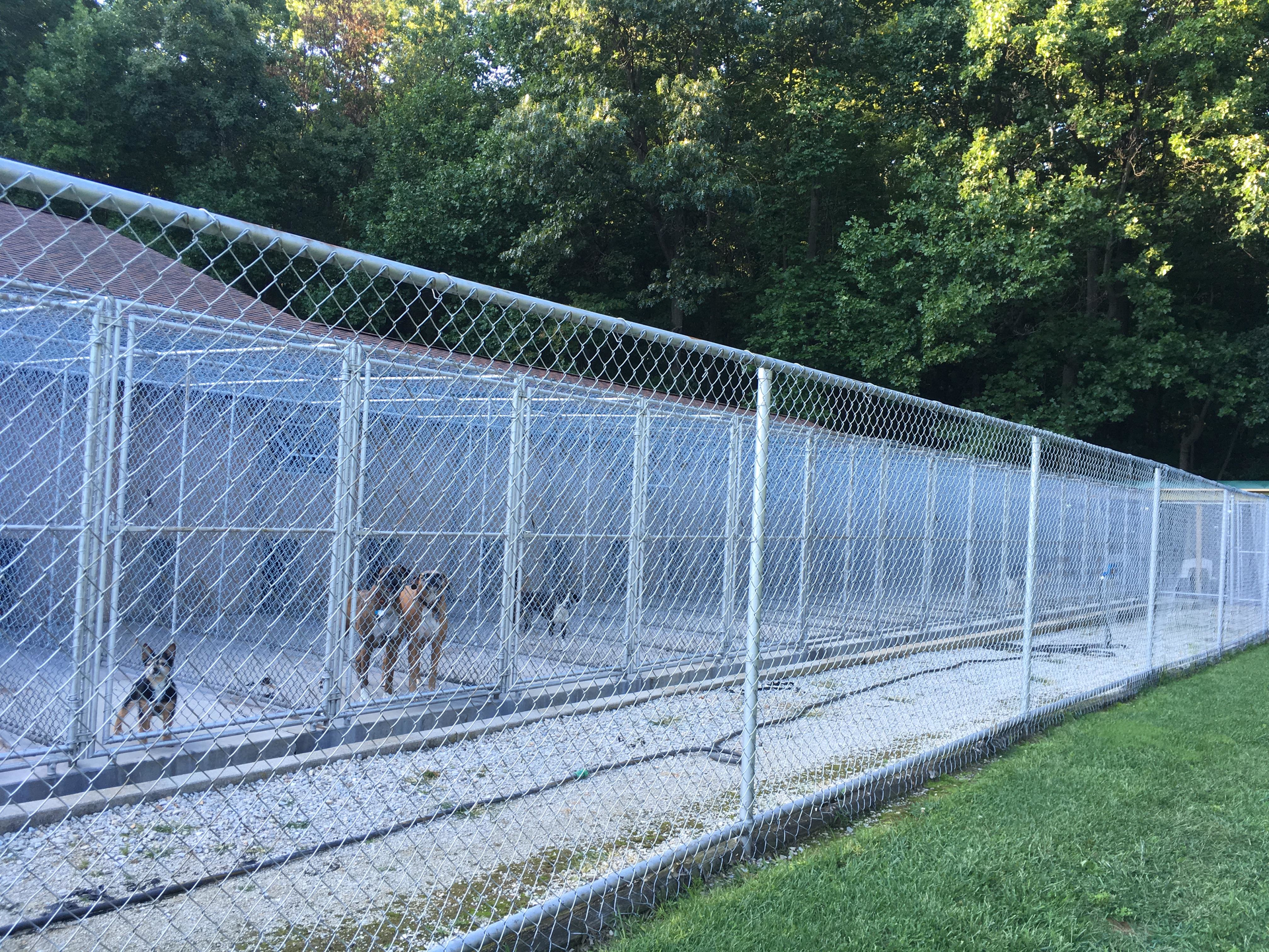 Laurel Hill Kennels   Pet Boarding   Hanover, PA