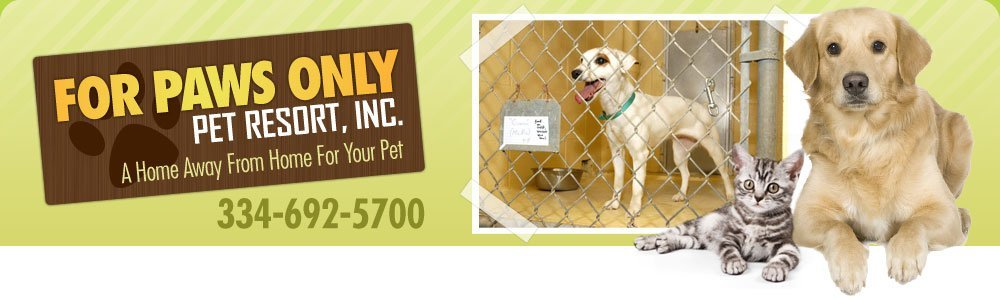 Pet Boarding Services - Dothan, AL - For Paws Only Pet Resort, Inc.