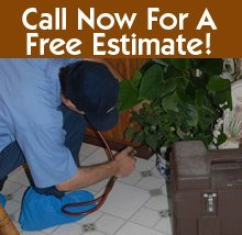 Pest Management - Eastpointe, MI - Arrow Pest Control