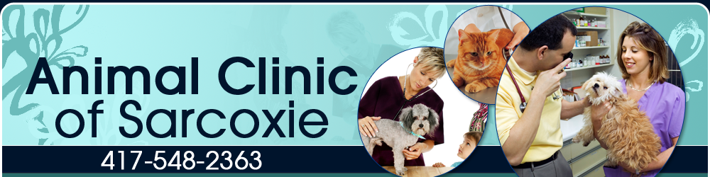 Veterinarian - Sarcoxie MO - Animal Clinic of Sarcoxie