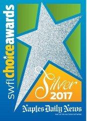 Choice Awards Silver 2017