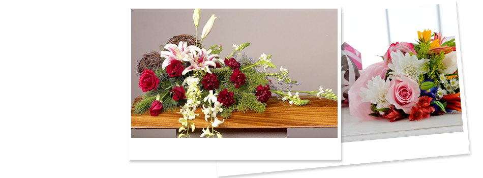 Gifts | Willmar, MN | Late Bloomers Floral & Gift, LLC | 320-235-4940