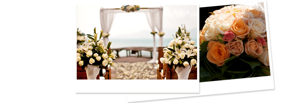Weddings | Willmar, MN | Late Bloomers Floral & Gift, LLC | 320-235-4940