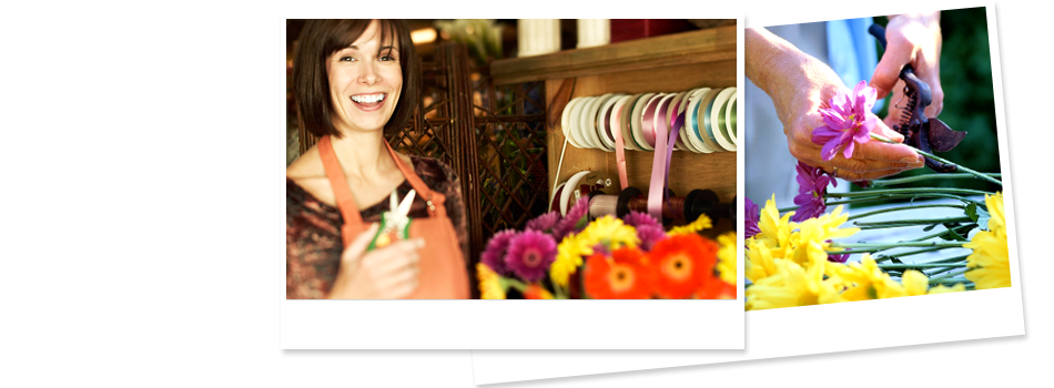 Florist  | Willmar, MN | Late Bloomers Floral & Gift, LLC | 320-235-4940