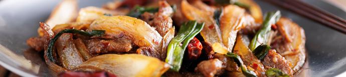chinese  szechuan  hunan  glens falls ny